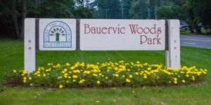 Bauervic Woods Park