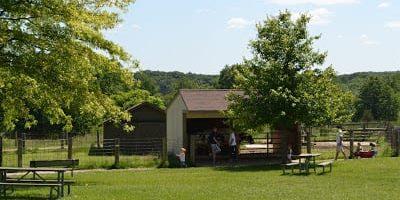 Kensington Metropark Farm Center Visitor's Guide and Photos