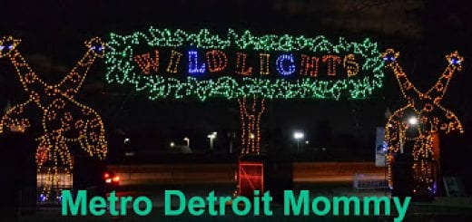 Detroit Zoo Christmas Lights.Wild Lights At The Detroit Zoo Metro Detroit Mommy