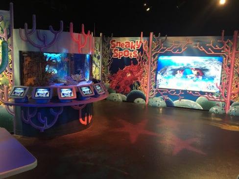 Doodle Reef Exhibit at Sea Life Aquarium