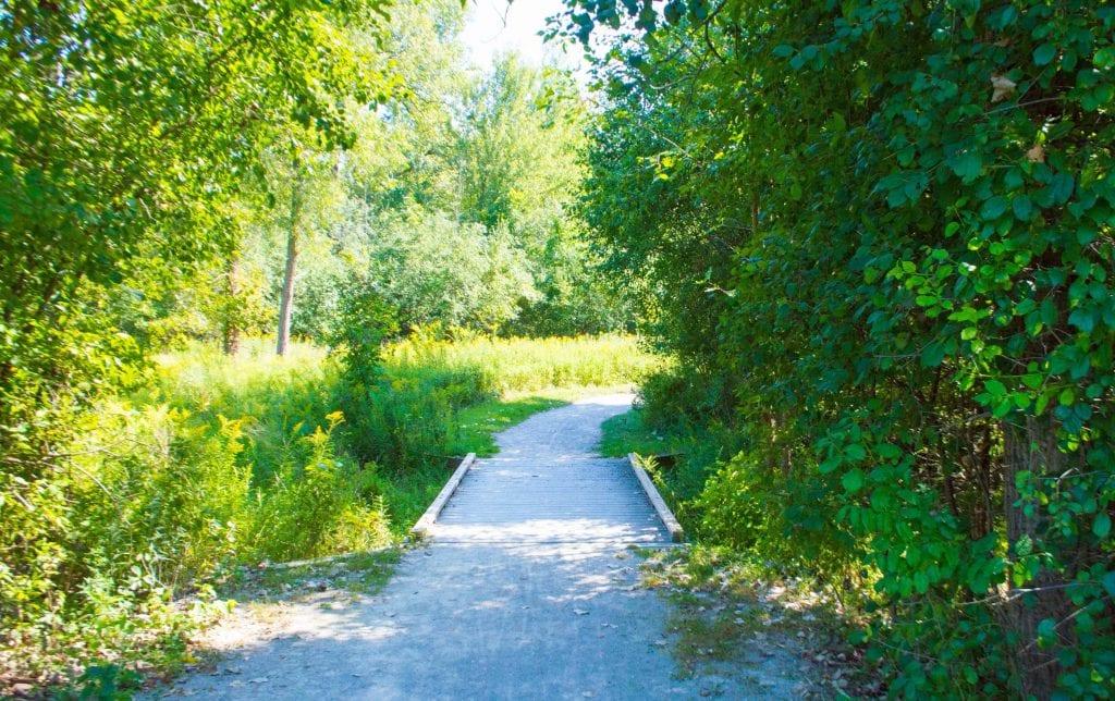 Carpenter Lake Nature Preserve Trail