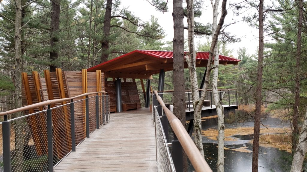 Pond Arm - Canopy Walk at Whiting Forest