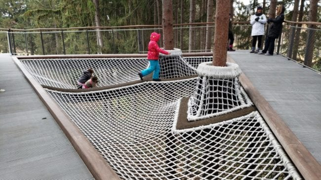 Midland Canopy Walk at Whiting Forest