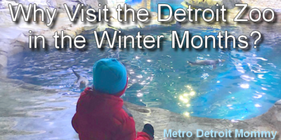 Why Visit the Detroit Zoo in the Winter Months?