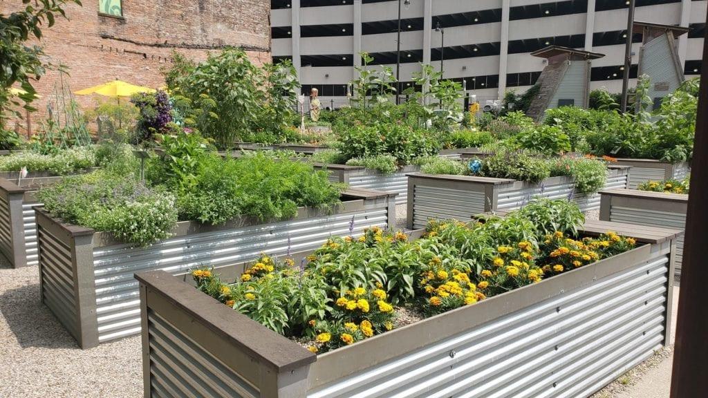 Lafayette Greens Urban Garden Detroit