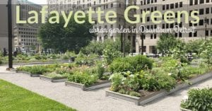 Lafayette Greens Urban Garden – The Greening of Detroit