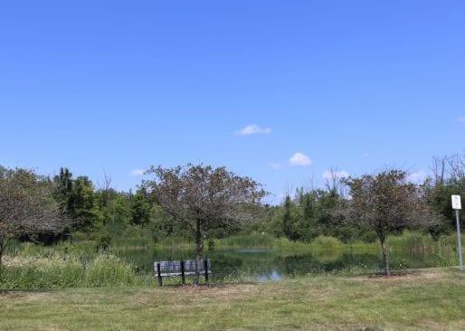 Friendship Park in Lake Orion