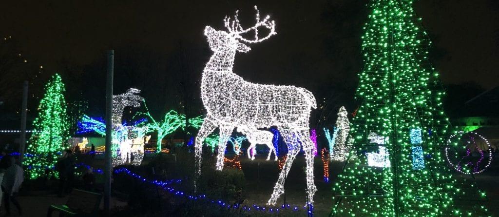 Reindeer Light Display