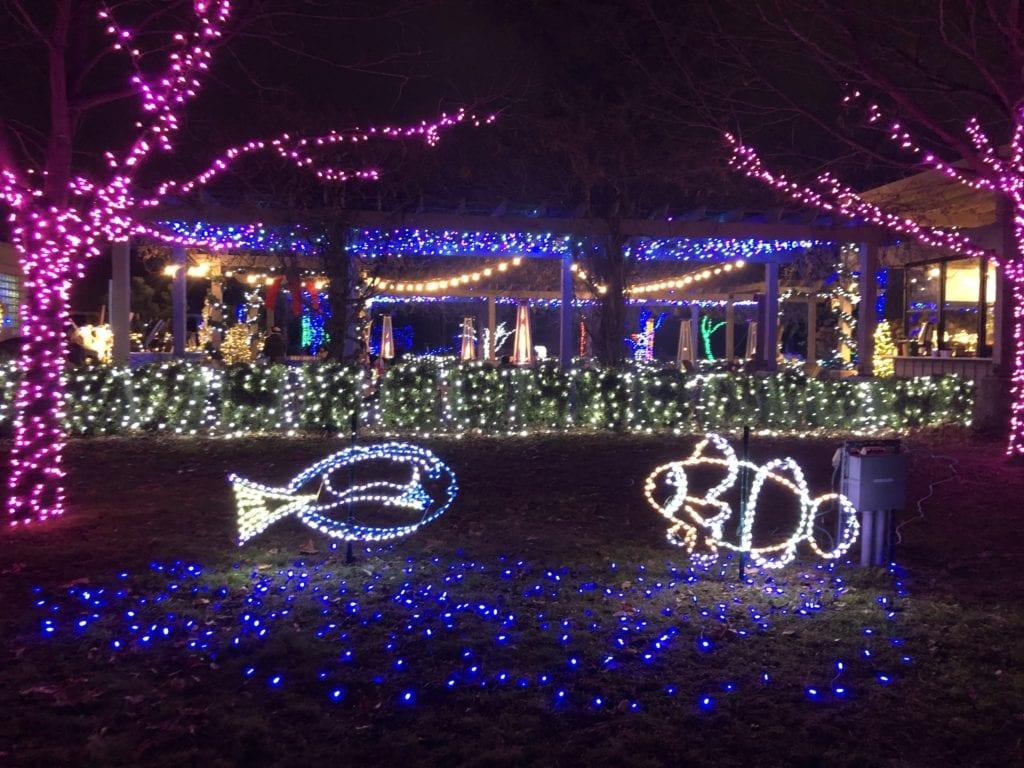 Wild Lights Detroit Zoo