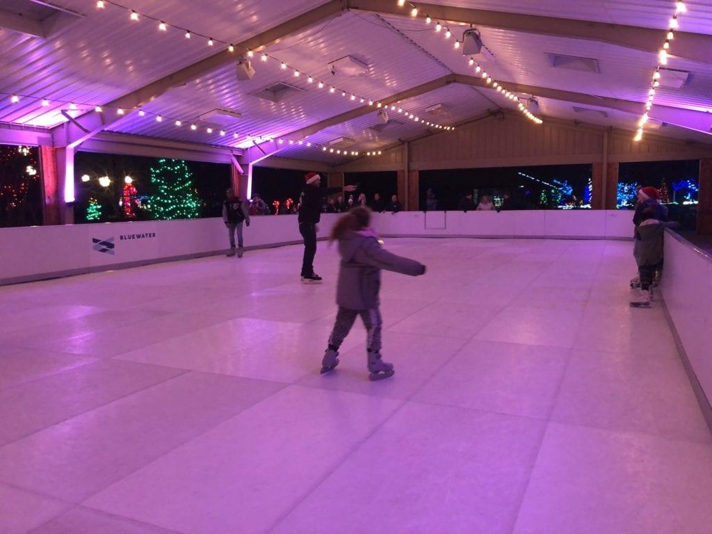 Ice Skating at the Detroit Zoo