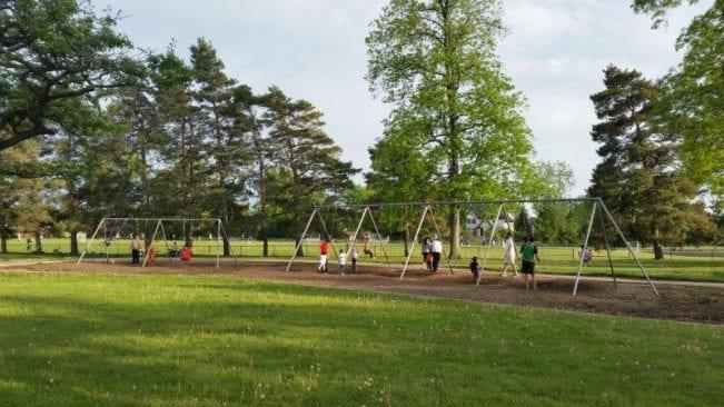 Boulan Park Swings