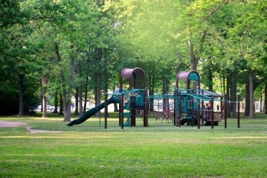 Robinwood Park in Troy play structure