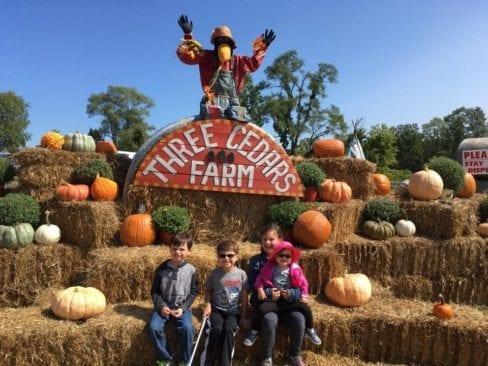 Three Cedars Farm in Northville