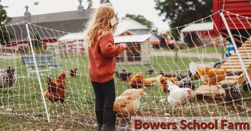 Charles L Bowers School Farm in Bloomfield Hills: Family Field Trip