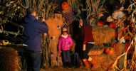 treerunner-halloween
