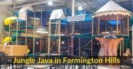 Jungle Java Farmington Hills (1)