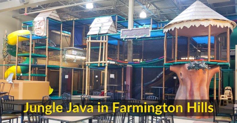 Indoor Play Space: Jungle Java in Farmington Hills