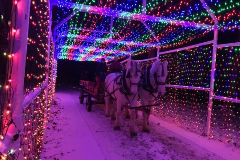 Davison Township's Trail of Lights