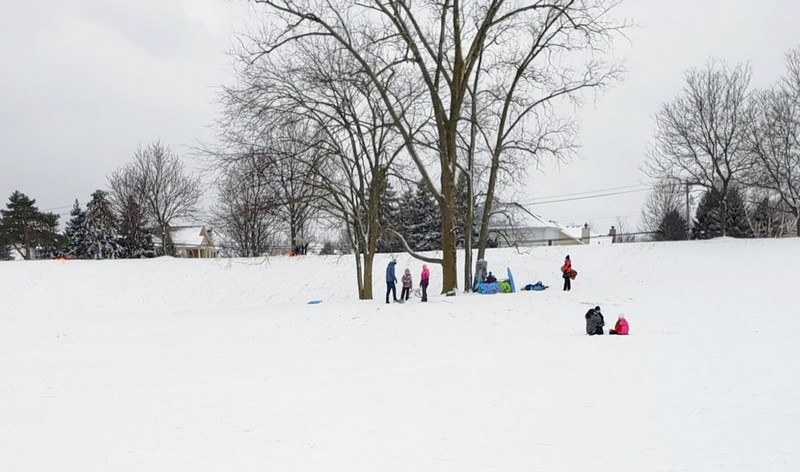Borden Park sledding hill