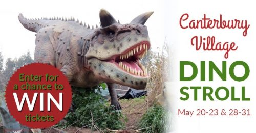 Dino Stroll Ticket Giveaway