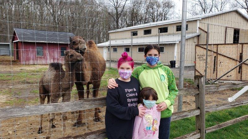 mama and baby camel at Indian Creek Zoo