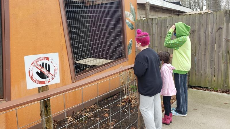 Indian Creek Zoo in Lambertville