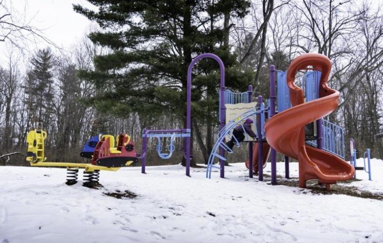 Bloomer Park Playground