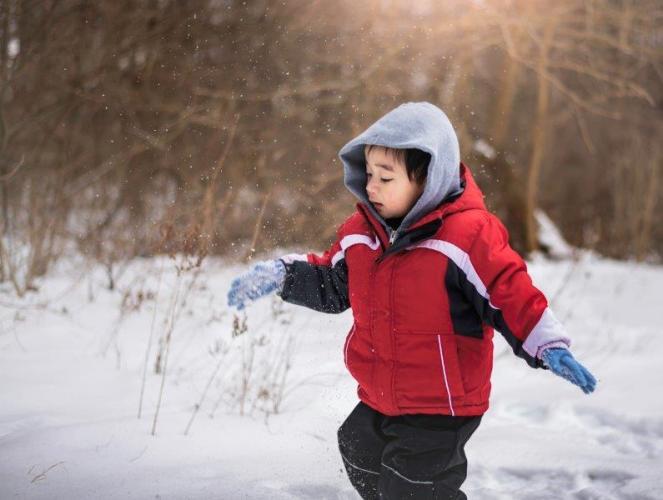 Bernard loves the snow