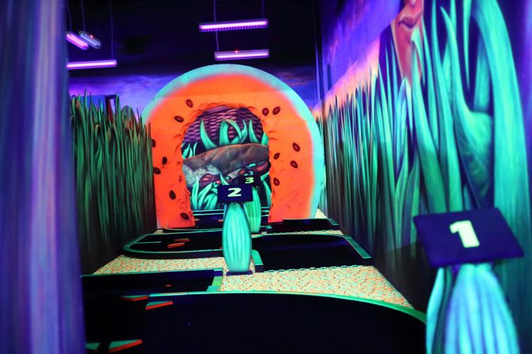 Black Light Indoor Minigolf in Macomb County