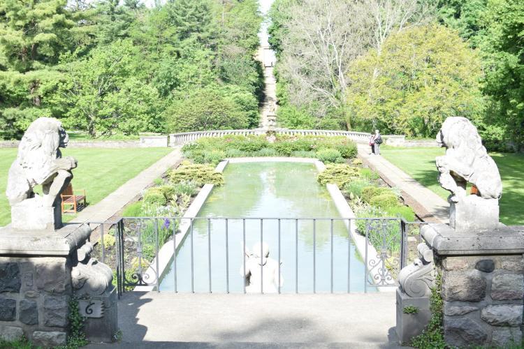 Cranbrook House & Gardens DSC_0448