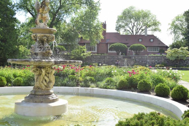 Cranbrook House & Gardens DSC_0481