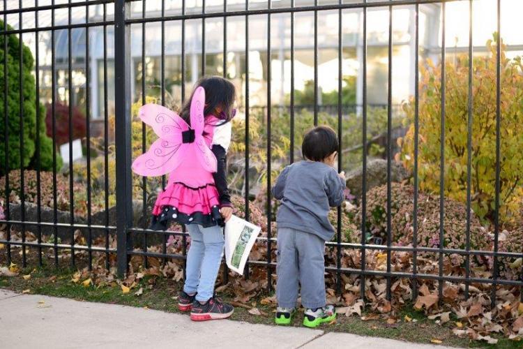 Fairy Doors at Belle Isle Park in Detroit (13)