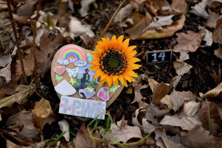 Fairy Doors at Belle Isle Park in Detroit (24)