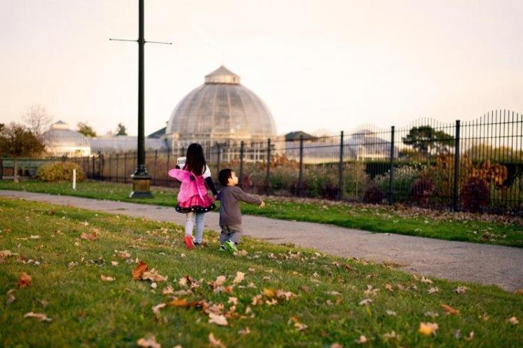Fairy Doors at Belle Isle Park in Detroit (3)