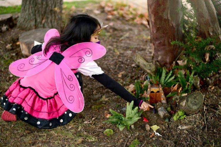 Fairy Doors at Belle Isle Park in Detroit (5)