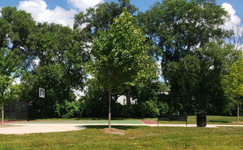 Gainsboro Park in Pleasant Ridge (1)