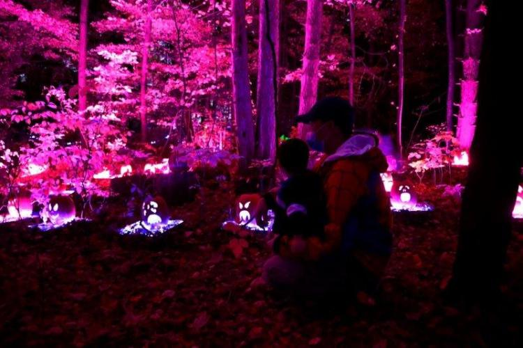 Glenlore Trails Haunted Forest Edition in Commerce Township (3)