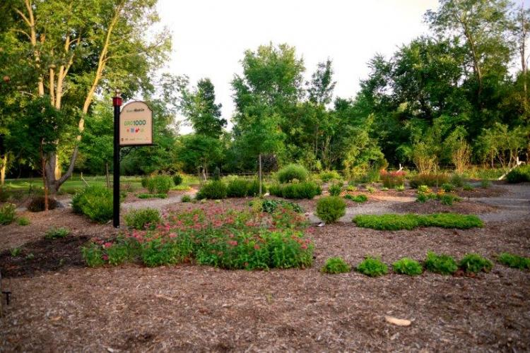 Innovation Hills Park in Rochester Hills (11)
