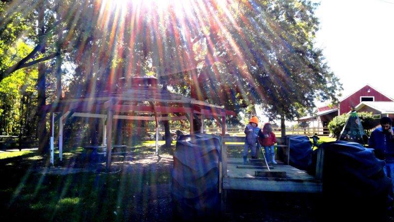Oxford Upland Hills Farm Fall Festival Harvest (17)