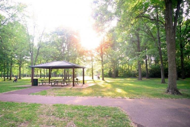 Robinwood Park in Troy (2)