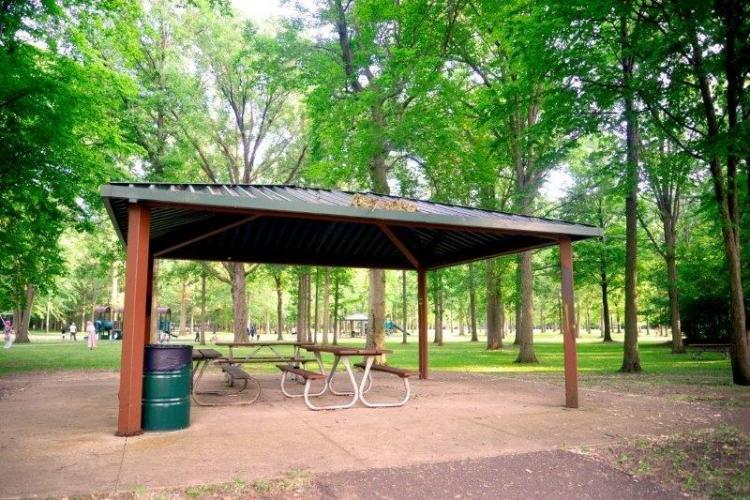 Robinwood Park in Troy (3)