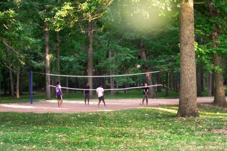 Robinwood Park in Troy (4)