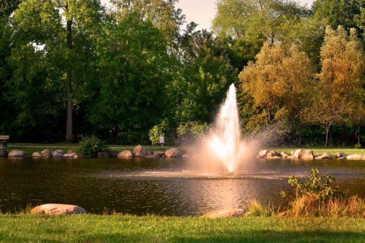 Rochester Municipal Park in Rochester (9)