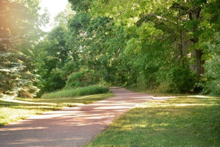 Independence Oaks County Park (85)